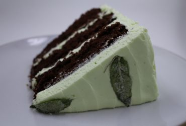 Grasshopper Cake | Pork Cracklins